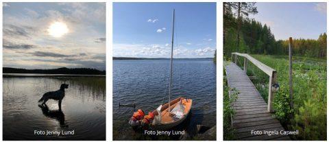 juni_collage sommar i bastuträsk