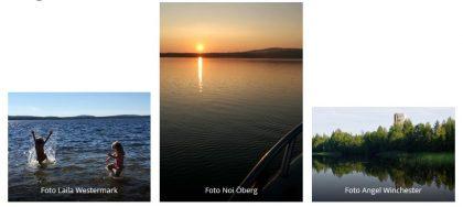 augusti_collage bastuträsk